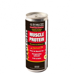 Cannette MUSCLE PROTEIN STC Nutrition