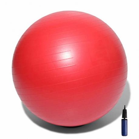 ballon de gym msd id al pour la r ducation. Black Bedroom Furniture Sets. Home Design Ideas