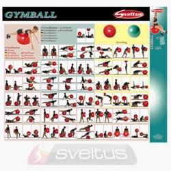Poster Gymball Sveltus